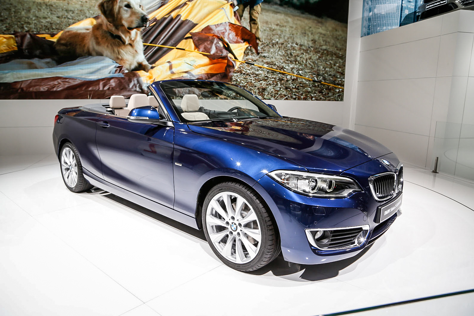 bmw 2 series convertible breaks cover at paris motor show autocar. Black Bedroom Furniture Sets. Home Design Ideas