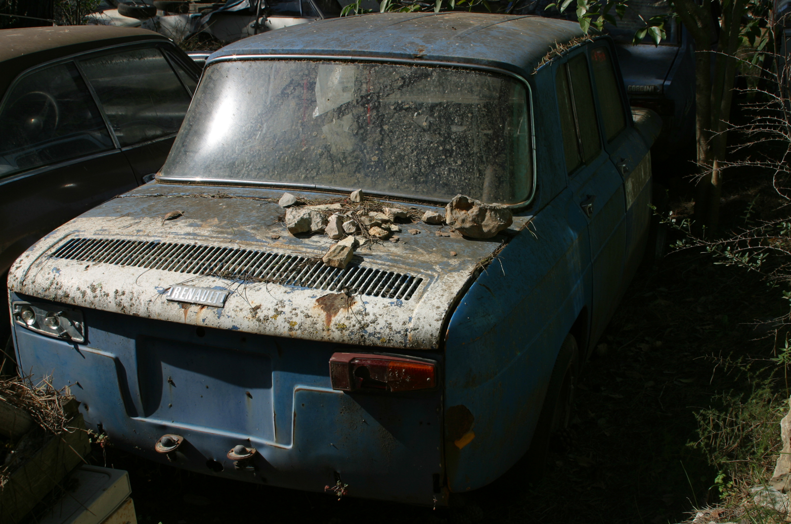 Rusty Cars Why Theyre Not A Thing Of The Past Autocar Ford Forums Mustang Forum Trucks Focus And
