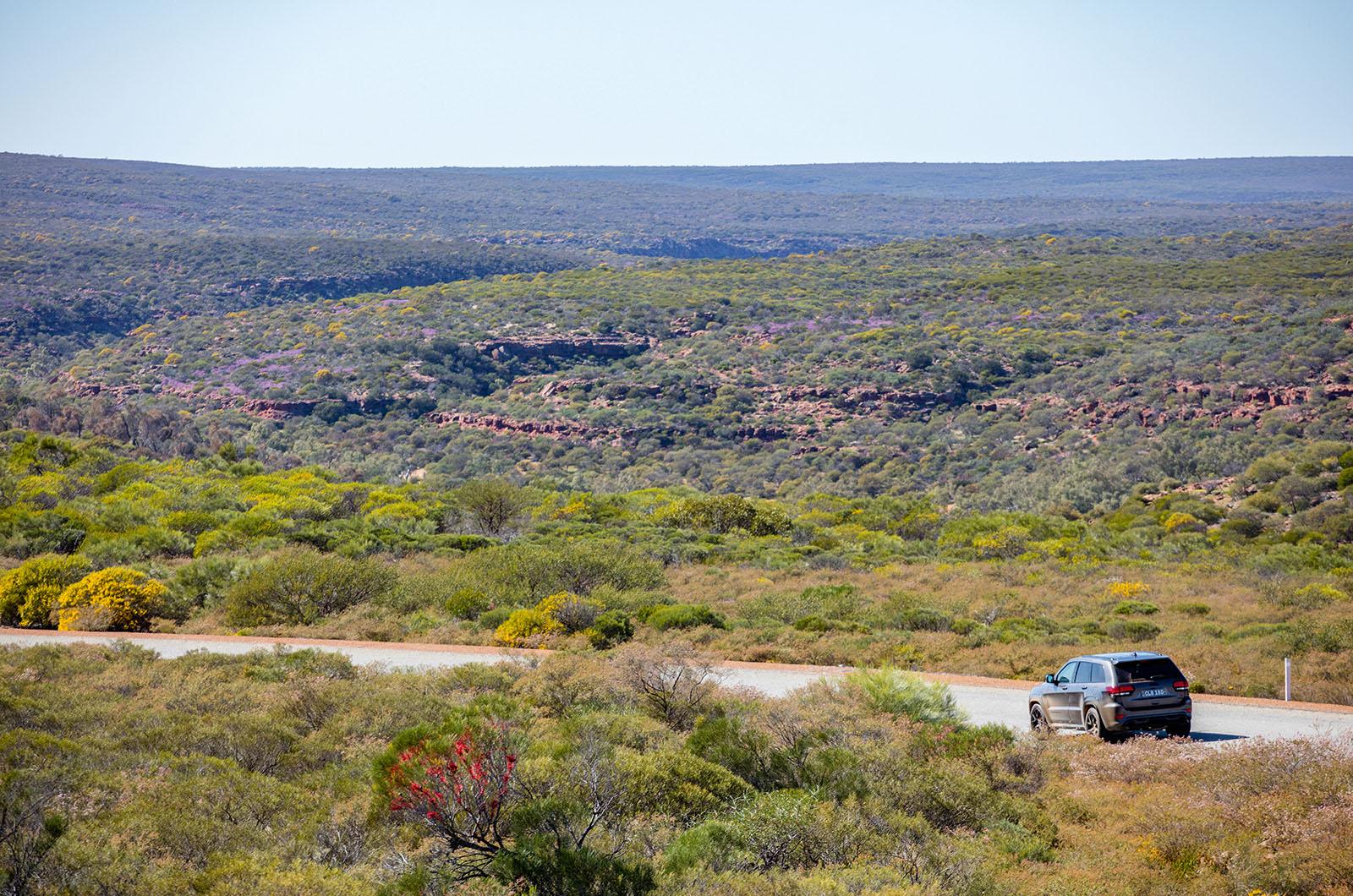 Jeep Grand Cherokee SRT - 468bhp Hemi V8 ventures into the Outback