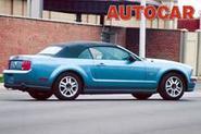 Mustang may gallop to UK