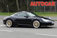 New Porsche shapes up