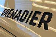 Grenadier badge