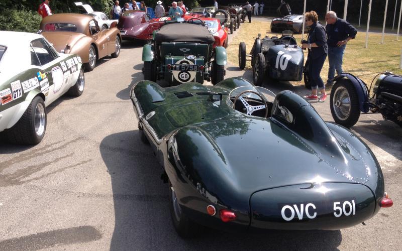 Driving the Jaguar D-type at Goodwood