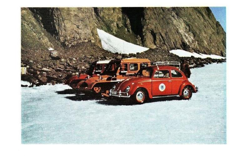 The Beetle in Antarctica (1963)
