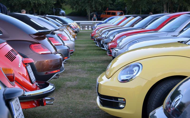Beetle gatherings