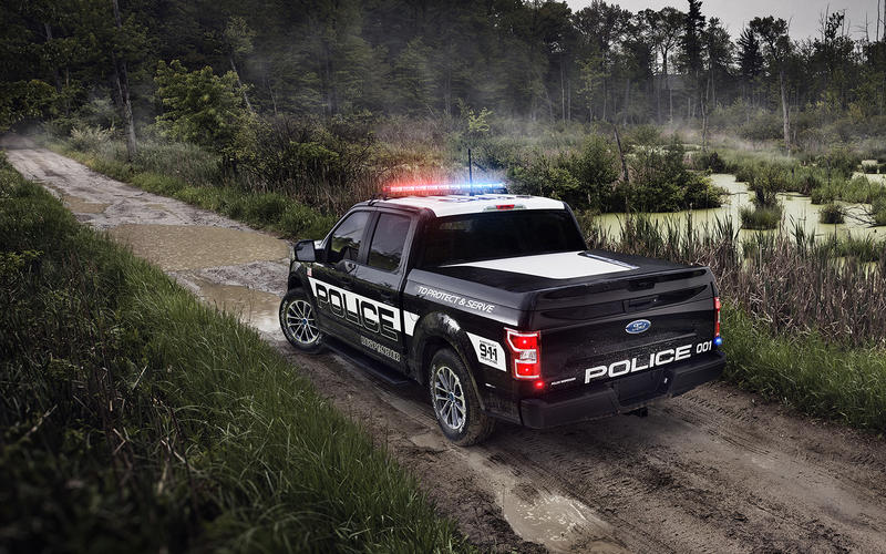 31: Ford F-150 (USA)