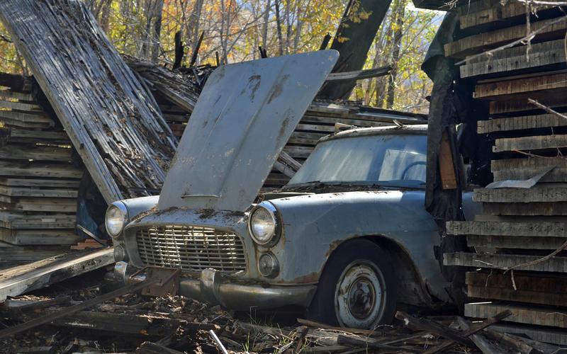 Abandoned cars hide everywhere.