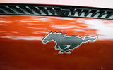 5 Ford Mustang Mach e 2021 RT nose badge