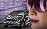 Aston Cygnet's madcap colours