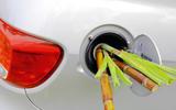 Bamboo shoots in car