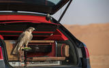 Mulliner falconry