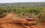 1 retro safari  S11 0539 fine