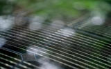 21 Hyundai Ioniq 5 2021 FD Norway plates solar charging