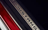 Ford Mustang Mach-E 2020 first ride - scuff plates