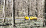 TVR Griffith in a forest