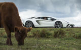 4 star Lamborghini Aventador S