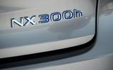 Lexus NX badging