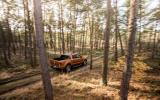 Ford Ranger Wildtrak in the woods