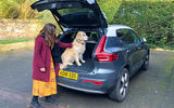 Volvo XC40 long term review - dog in boot
