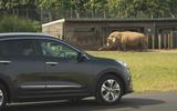 Kia e-Niro 2019 long-term review - rhino