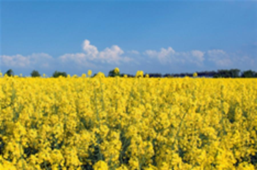 Chancellor drops biofuels to save £500m