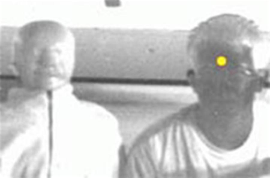 Blood-sensing cameras to foil car-share