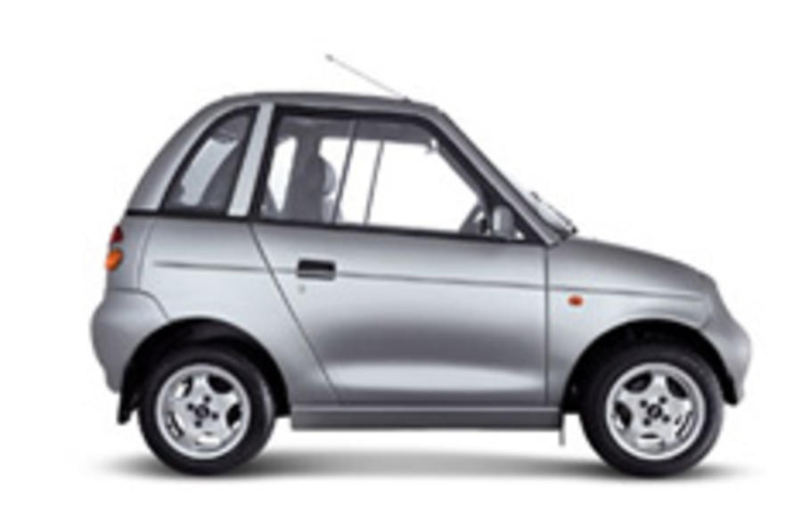 PM plans electric car subsidy