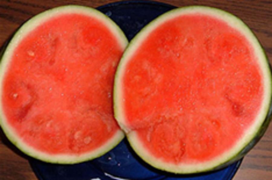Watermelon powered cars
