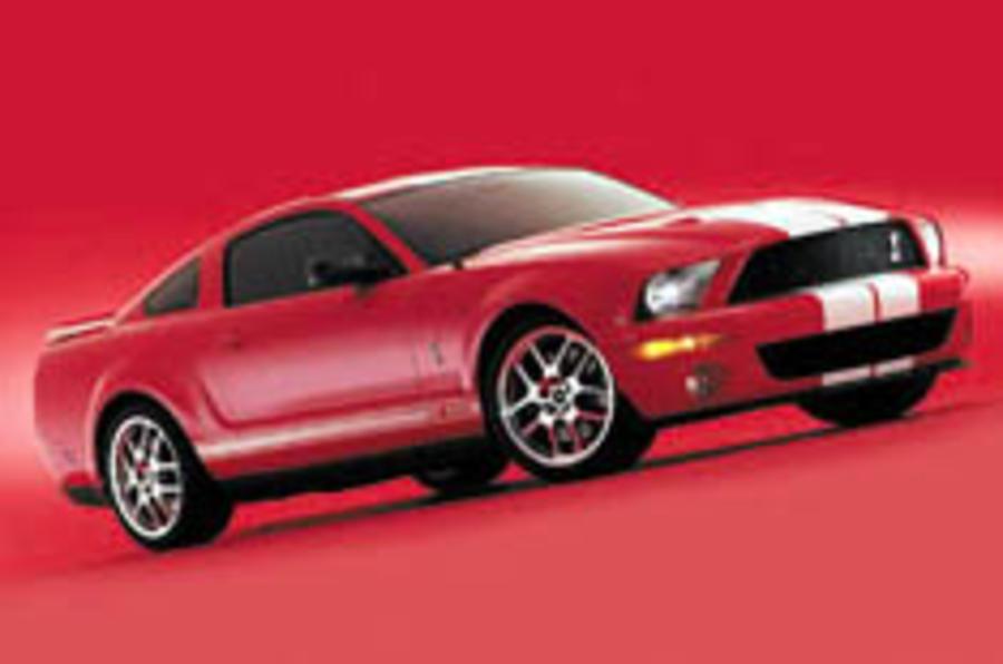 Mustang at full gallop