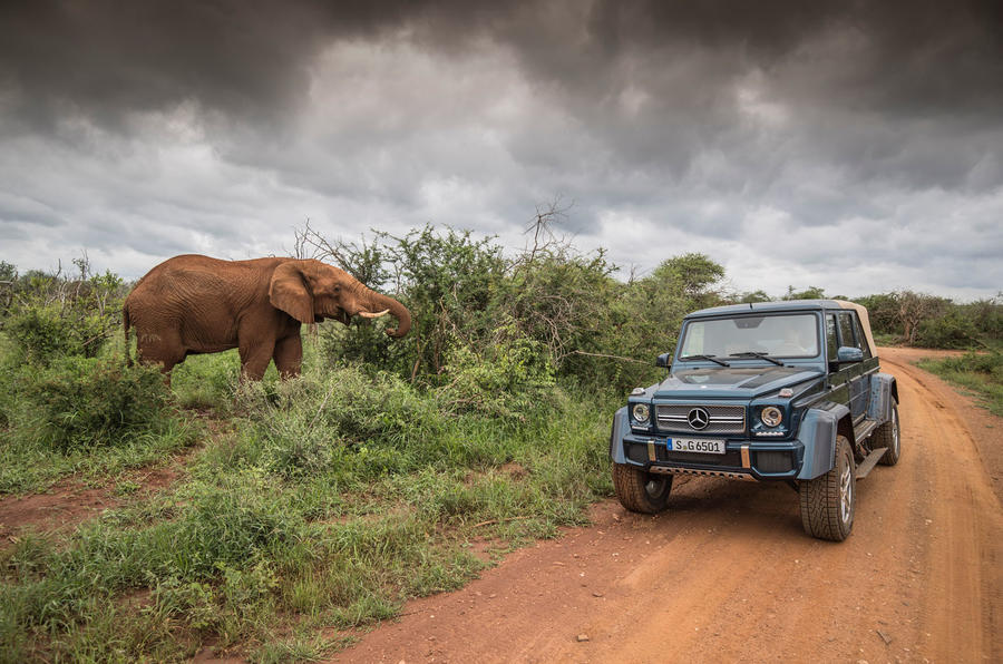 Mercedes-Maybach G650 Landaulet next to an elephant