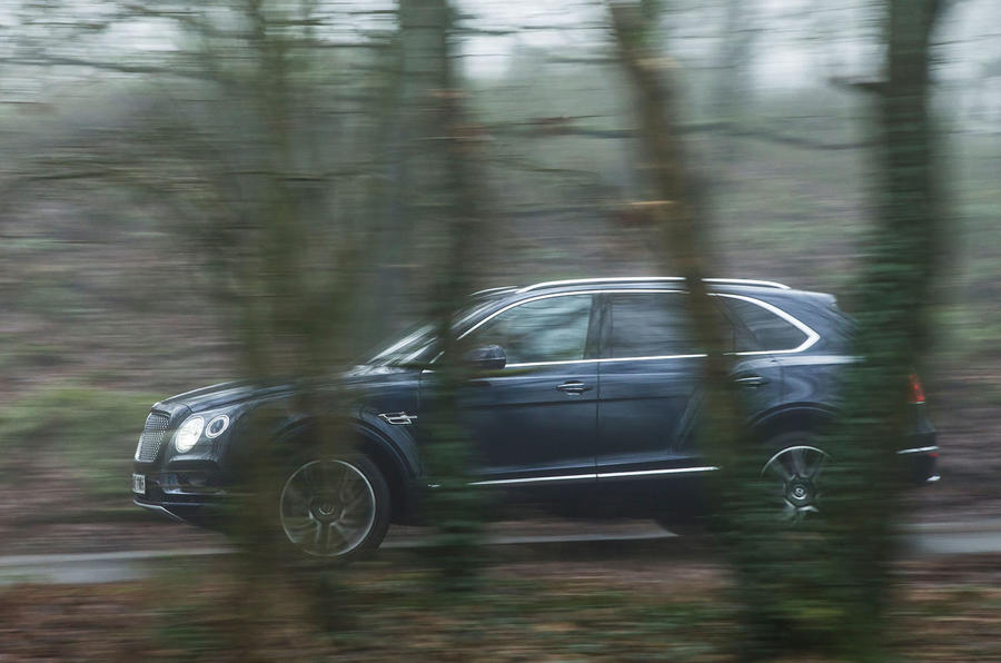 Bentley Bentayga Diesel side profile covered by trees