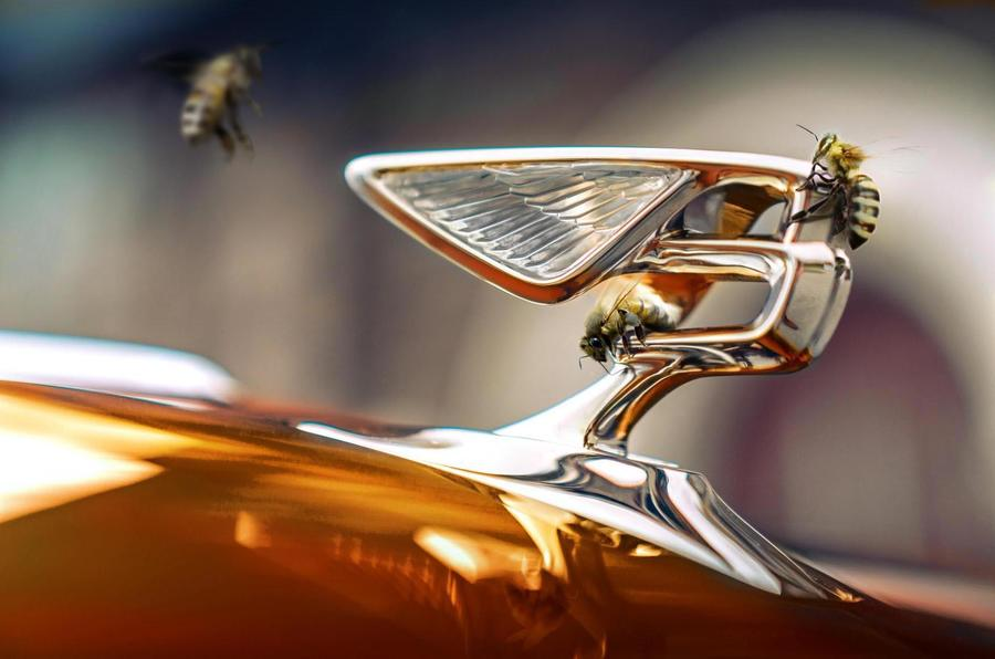 Bentley has harvested its first honey from two hives at Crewe