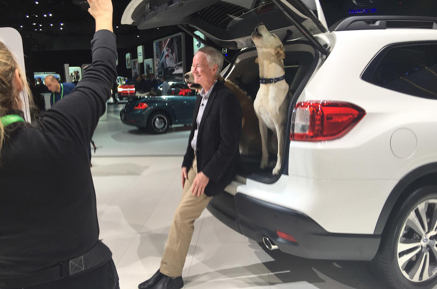 Subaru Ascent dog